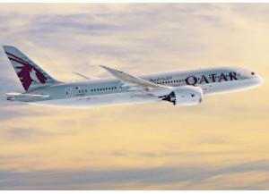 Qatar Airways service client